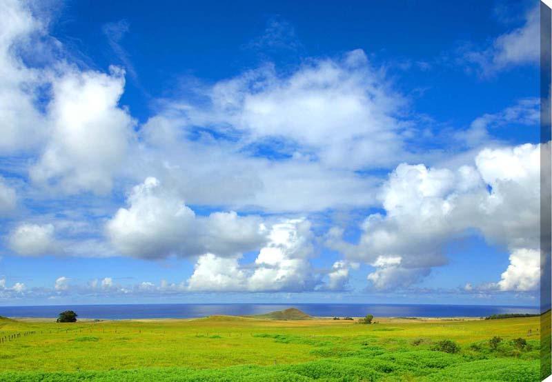 ポスターとは違うそのまま飾れる額のいらないインテリア フォト インテリア アート おくりもの プレゼント 流行のアイテム ギフト キャンバス地写真パネル 期間限定で特別価格 キャンバス地 CAN-01-M10 白い雲と海と草原 イースター島 風景写真パネル