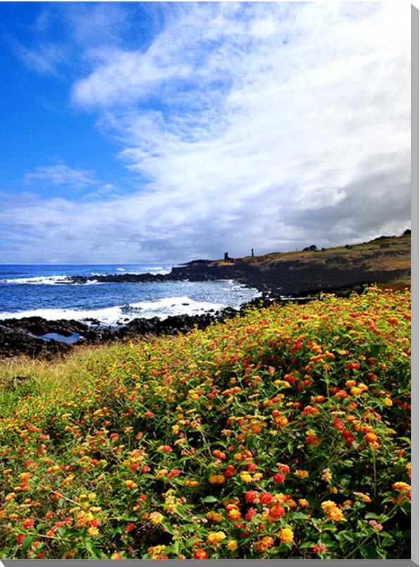 世界遺産イースター島 海とランタナ 風景写真パネル 41×27.3cm EST-09-P6 インテリア アート 壁掛け 【楽ギフ_名入れ】