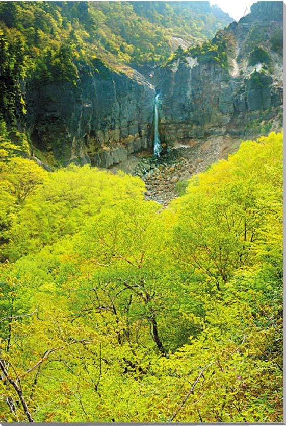 福島/会津 新緑の白糸の滝 風景写真パネル 【楽ギフ_名入れ】