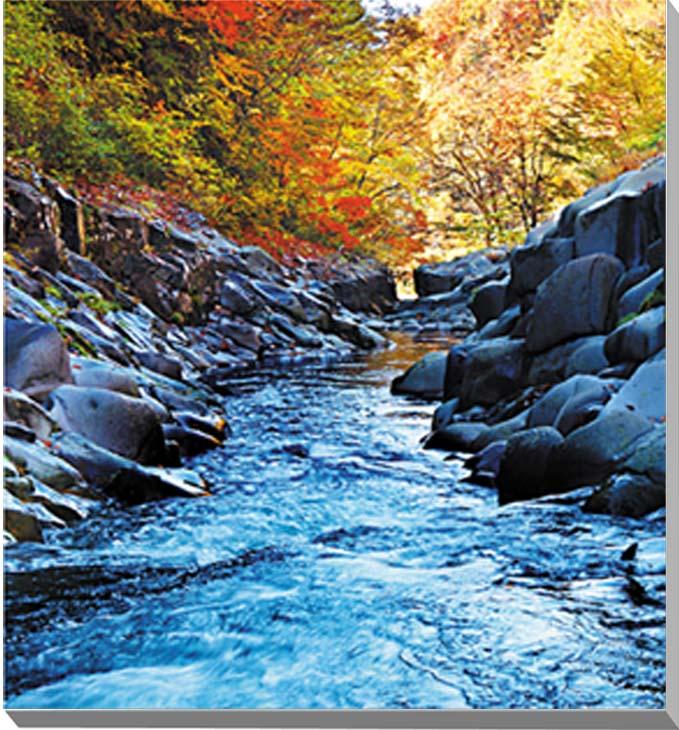 中津川渓谷 福島 風景写真パネル 45.5×45.5cmFUK-81-S8  【楽ギフ_名入れ】
