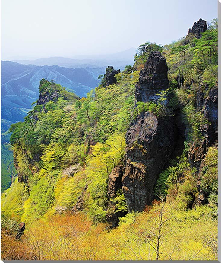 福島/新緑の霊山 風景写真パネル 65.2×53cmFUK-053-F15  【楽ギフ_名入れ】