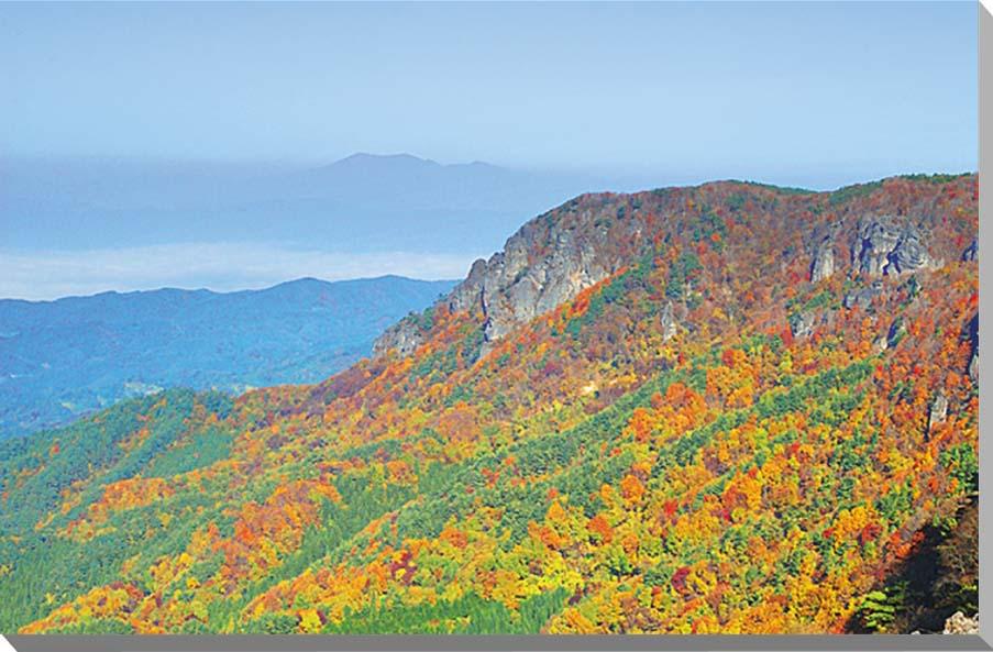 福島/霊山 雲海の蔵王と秋の紅葉 風景写真パネル 72.7×50cmFUK-045-M20  【楽ギフ_名入れ】