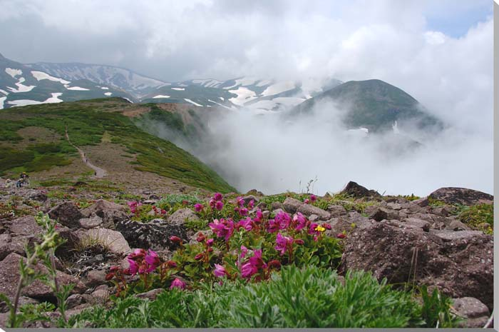 北海道 層雲峡/大雪山 風景写真パネル 65.2×45.5cm HOK-106-M15 【楽ギフ_名入れ】