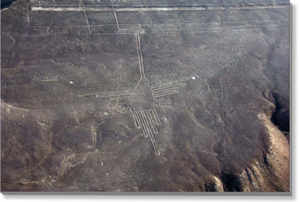 ナスカの地上絵『ハチドリ』 写真パネル NSK-06-M25