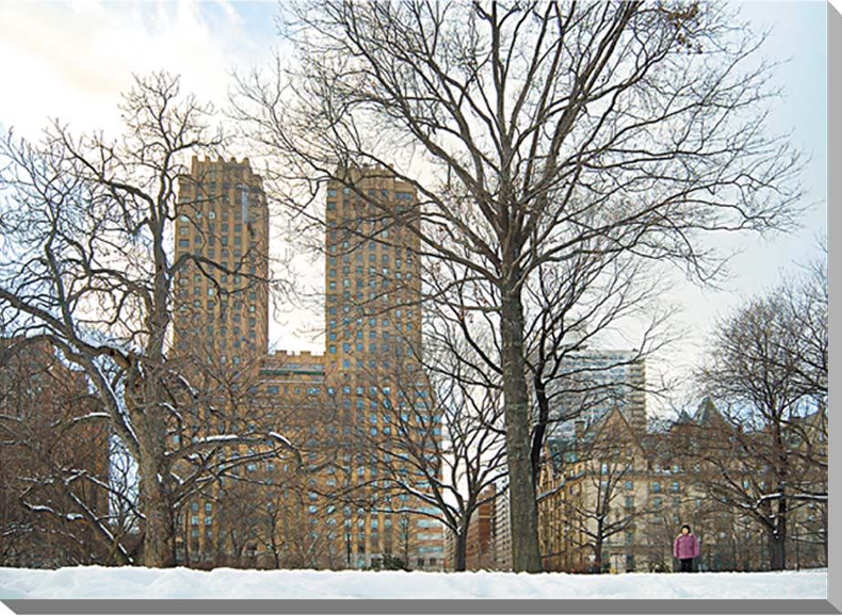 冬のニューヨーク セントラルパーク 風景写真パネル 60.6×45.5cm NEW-05-P12  【楽ギフ_名入れ】