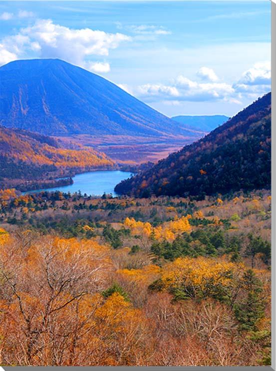 中禅寺湖/日光 風景写真パネル 80.3×60.6cm NIK-012-P25