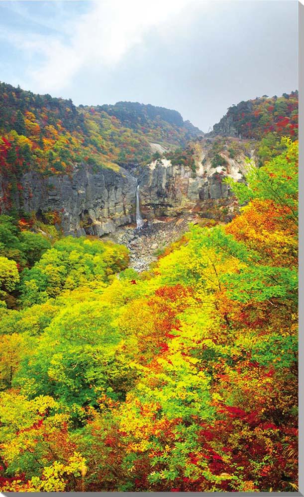 猪苗代 白糸の滝 秋の紅葉 風景写真パネル116.7×72.7cm BIG-05-M50
