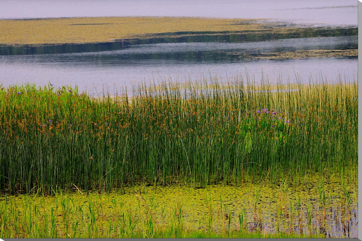 尾瀬沼 風景写真パネル 72.7×50cm OZE-016-M20インテリア ポスターとは違う、リビング,玄関にそのまま飾れる額がいらない,壁掛け,壁飾り。 絵画 アート,フォトアート,癒やしの装飾をお祝い,プレゼント,ギフトにも。
