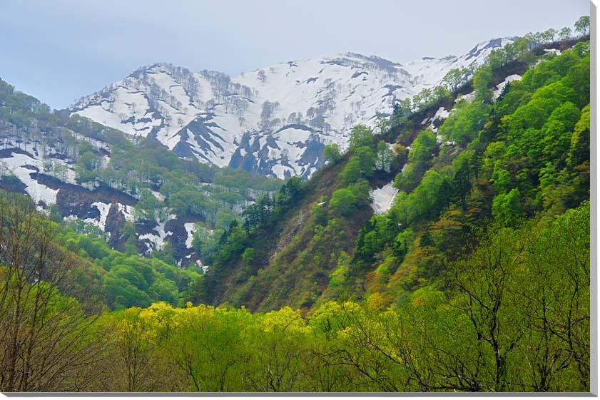 山形朝日村 風景写真パネル 72.7×50cmYAM-40-M20  【楽ギフ_名入れ】
