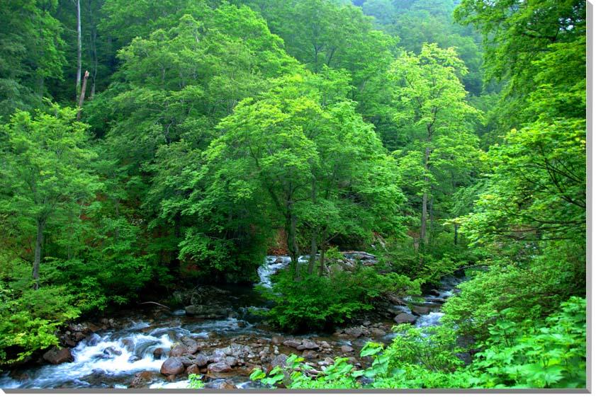 山形朝日村 風景写真パネル 65.2×45.5cmYAM-33-M15  【楽ギフ_名入れ】