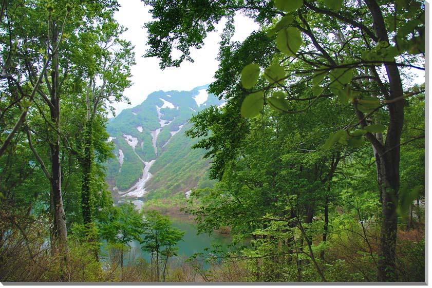 山形朝日村 風景写真パネル 65.2×45.5cmYAM-34-M15  【楽ギフ_名入れ】