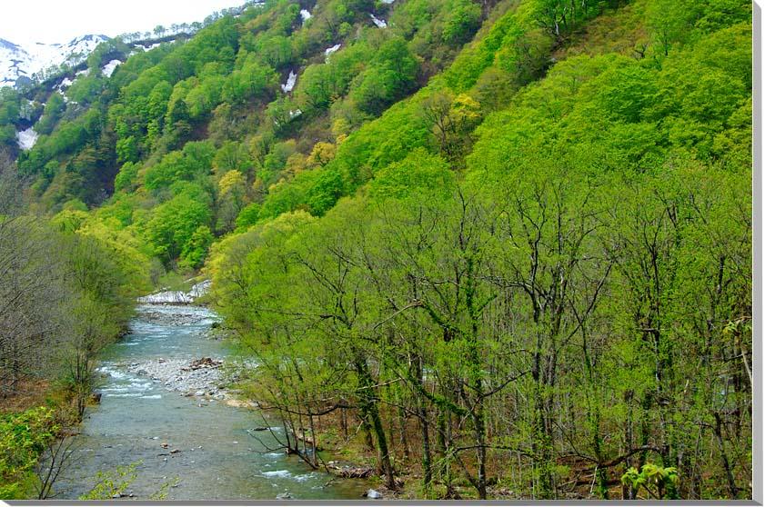山形朝日村 風景写真パネル 65.2×45.5cmYAM-25-M15  【楽ギフ_名入れ】