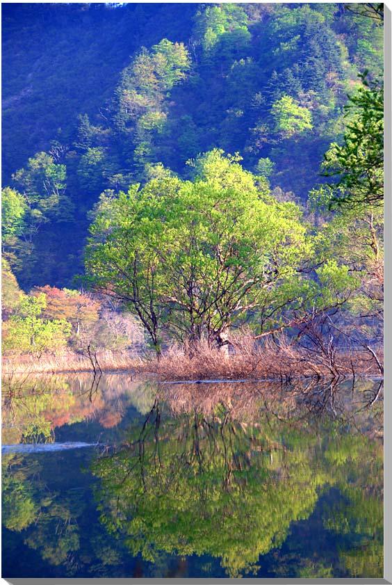 山形朝日村 風景写真パネル 65.2×45.5cmYAM-35-M15  【楽ギフ_名入れ】