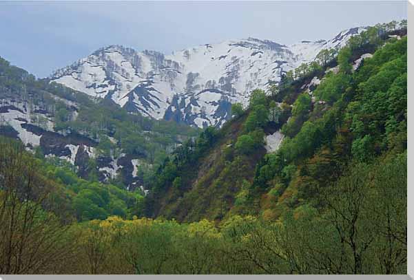朝日村1 山形 風景写真パネル
