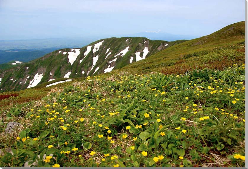 山形月山 風景写真パネル 80.3×53cmM25  【楽ギフ_名入れ】