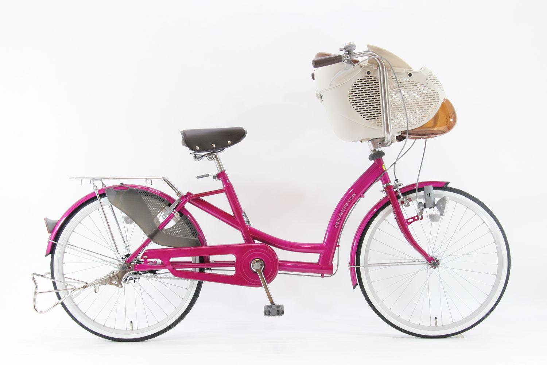 SOGO children ride bicycles CHT22CSmini G3J custom 3 speed Auto with BAA