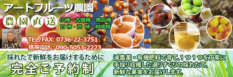アートフルーツ農園生青梅柿柑橘類:安心・安全エコファーマー認定農家より干し柿用各種渋柿、甘柿をお届け