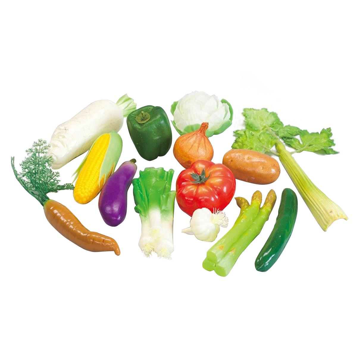 野菜モデル 14種セット 【 デッサン スケッチ 絵画 モデル 果物 野菜 】