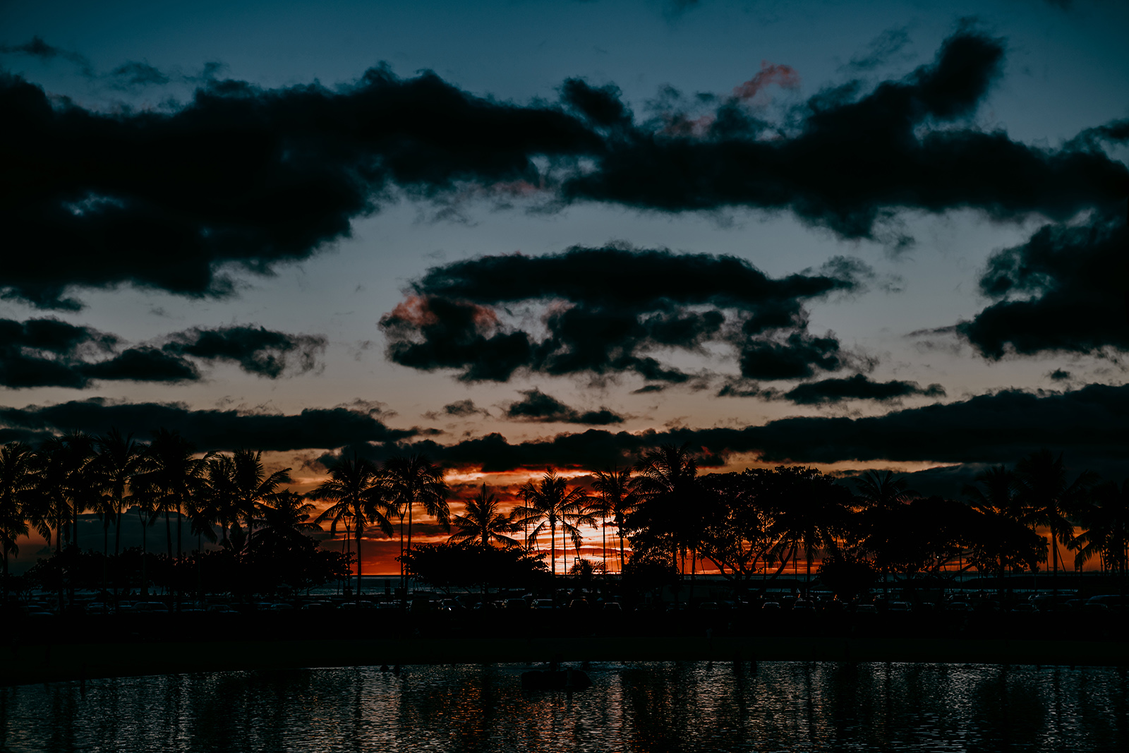 【日本製】アートパネル/ボード artmart アートマート 写真 アルミフレーム おしゃれ 綺麗 コーディネート 壁紙 額縁 ウォールステッカー フォト 小物 部屋 オフィス ホテル 旅館 病院 ホールのイメージアップ モノトーン 花 海 モノクロ 風景_サンセット_I85_8463