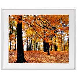 秋の情景 アートフレーム:色シルバー サイズL 641×531mm 【油絵 直筆仕上げ絵画】【布キャンバス・額表面保護板】 油彩 風景画 オリジナルインテリア絵画 風水画