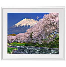 富士山-桜- アートフレーム:色シルバー サイズL 641×531mm 【油絵 直筆仕上げ絵画】【布キャンバス・額表面保護板】 油彩 風景画 オリジナルインテリア絵画 風水画