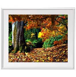 秋、深まる アートフレーム:色シルバー サイズL 641×531mm 【油絵 直筆仕上げ絵画】【布キャンバス・額表面保護板】 油彩 風景画 オリジナルインテリア絵画 風水画