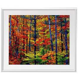 紅葉の森 アートフレーム:色シルバー サイズL 641×531mm 【油絵 直筆仕上げ絵画】【布キャンバス・額表面保護板】 油彩 風景画 オリジナルインテリア絵画 風水画