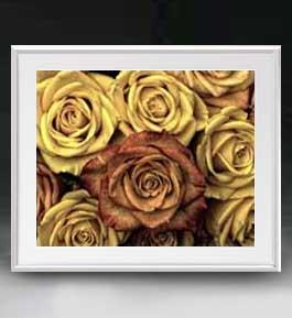 Flowers フラワーズ ♯005 アートフレーム サイズL 【油絵 直筆仕上げ】【油彩 布キャンバス 国内生産】 花の絵 静物画 641×531mm インテリアアート 送料無料