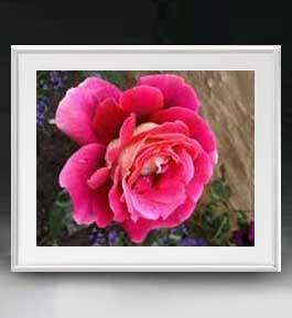 Flowers フラワーズ ♯008 アートフレーム サイズL 【油絵 直筆仕上げ】【油彩 布キャンバス 国内生産】 花の絵 静物画 641×531mm インテリアアート 送料無料