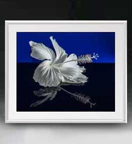 Flowers フラワーズ ♯038 アートフレーム サイズL 【油絵 直筆仕上げ】【油彩 布キャンバス 国内生産】 花の絵 静物画 641×531mm インテリアアート 送料無料