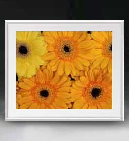 Flowers フラワーズ ♯044 アートフレーム サイズL 【油絵 直筆仕上げ】【油彩 布キャンバス 国内生産】 花の絵 静物画 641×531mm インテリアアート 送料無料