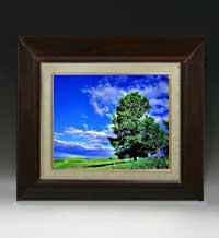 空と木と雲 F3サイズ 【油絵 直筆仕上げ絵画】【額縁付】 油彩 風景画 オリジナルインテリア絵画 風水画 420×368mm 送料無料