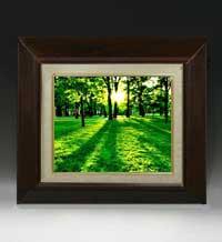 樹光 F3サイズ 【油絵 直筆仕上げ絵画】【額縁付】 油彩 風景画 オリジナルインテリア絵画 風水画 420×368mm 送料無料
