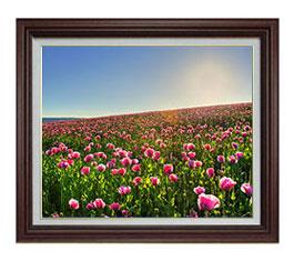 春の花々 F12サイズ 【油絵 直筆仕上げ】【額縁付】 油彩 風景画 オリジナルインテリア絵画 風水画 ブラウン額縁 757×656mm 送料無料