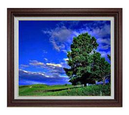 空と木と雲 F12サイズ 【油絵 直筆仕上げ】【額縁付】 油彩 風景画 オリジナルインテリア絵画 風水画 ブラウン額縁 757×656mm 送料無料