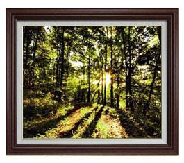 木漏れ日 F15サイズ 【油絵 直筆仕上げ】【額縁付】 油彩 風景画 オリジナルインテリア絵画 風水画 ブラウン額縁 812×690mm 送料無料