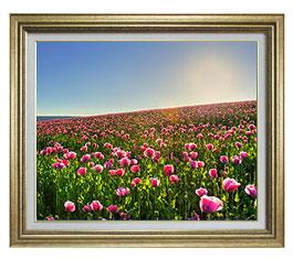 春の花々 F15サイズ 【油絵 直筆仕上げ】【額縁付】 油彩 風景画 オリジナルインテリア絵画 風水画 ゴールド額縁 812×690mm 送料無料
