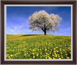 春-桜と菜の花- F30サイズ 【油絵 直筆仕上げ】【額縁付】 油彩 風景画 オリジナルインテリア絵画 風水画 ブラウン額縁 1070×887mm 送料無料