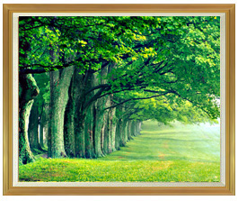 the green woods F50サイズ 【油絵 直筆仕上げ絵画】【キャンバス・額縁付】 油彩 風景画 インテリア絵画 風水画 インテリアアート絵画 1303mm×1046mm 50号