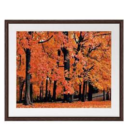 秋、紅葉 アートフレーム:色ブラウン サイズL 651×541mm 【油絵 直筆仕上げ絵画】【軽量フレーム・額表面保護板】 油彩 風景画 オリジナルインテリア絵画 風水画 壁掛け