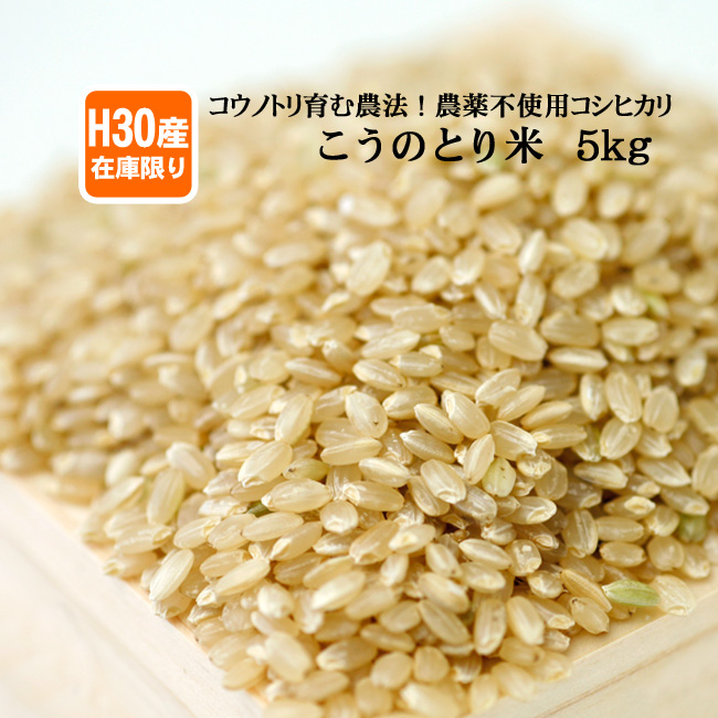 【在庫限定・H30年産】農薬不使用 玄米(5kg)白米 コウノトリ米 有機肥料 兵庫県産コシヒカリ