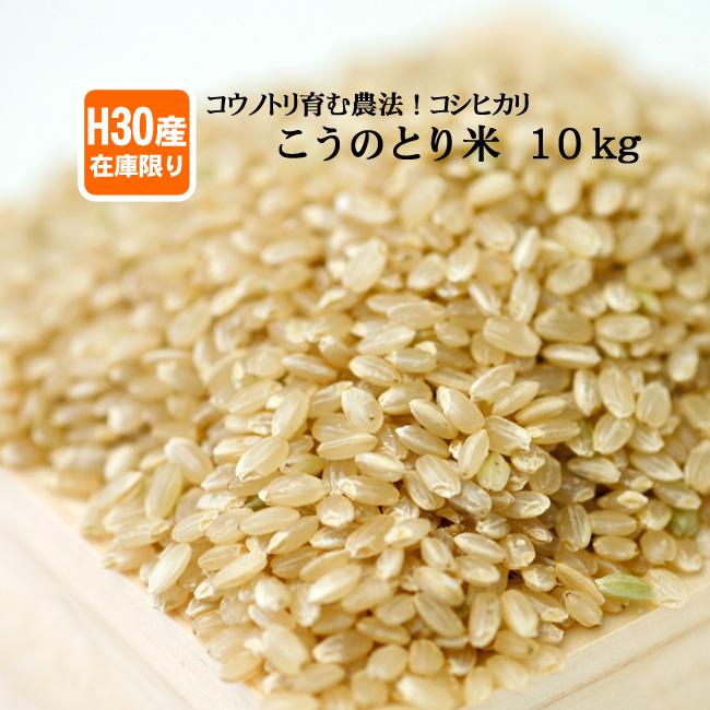 【在庫限定・H30年産】お米10kg 玄米 白米 コウノトリ米【当日精米】【送料無料】
