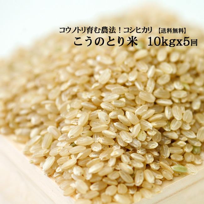 【定期購入】 お米10kg×5回 玄米 白米 コウノトリ米【当日精米】【送料無料】