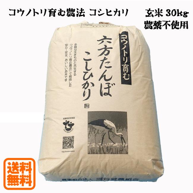 【新米予約可】こうのとり米 玄米(30kg)農薬不使用 六方たんぼのコシヒカリ コウノトリ育む農法 兵庫県産【送料無料】