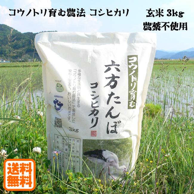 玄米 コウノトリ育む農法のお米 こうのとり米 3kg 農薬不使用 送料無料 令和2年産 コウノトリ育む農法 おトク 兵庫県産 正規逆輸入品 六方たんぼのコシヒカリ