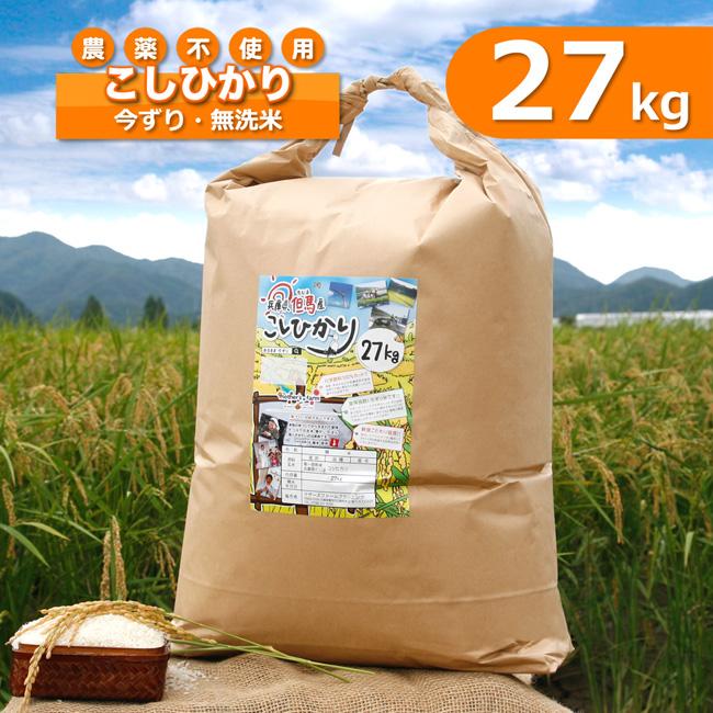 【新米予約 令和2年産】令和2年産 玄米 白米 今ずり米 無洗米 農薬不使用 コシヒカリ 【27kg】【送料無料】