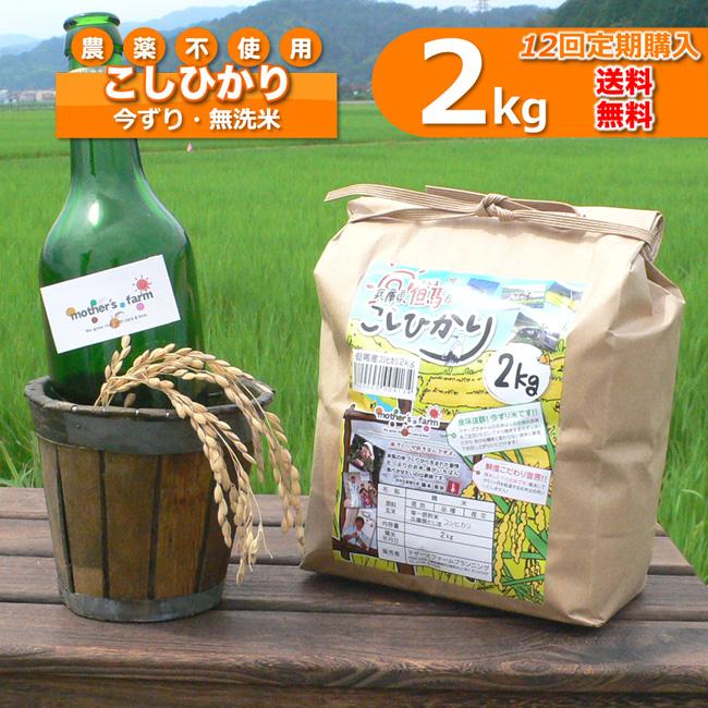 【定期購入】2kgx12回 令和元年産 玄米 白米 今ずり米 無洗米 農薬不使用 コシヒカリ