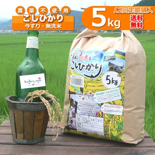 【定期購入】5kgx12回 令和元年産 玄米 白米 今ずり米 無洗米 農薬不使用 コシヒカリ