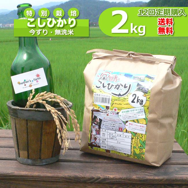 【定期購入】2kgx12回 令和元年産 玄米 白米 今ずり米 無洗米 減農薬・特別栽培米 コシヒカリ