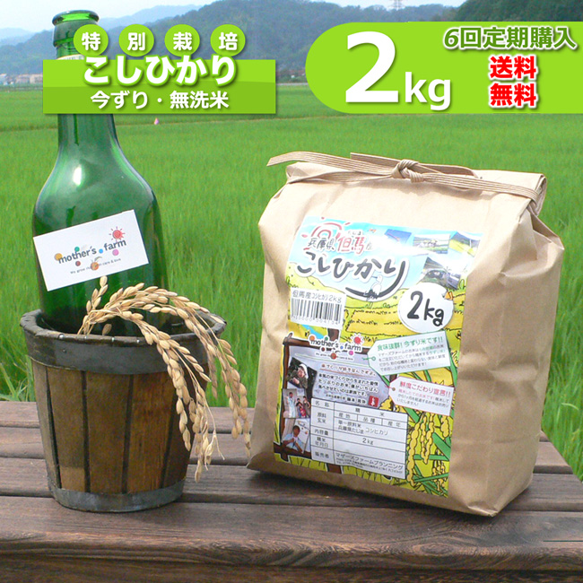 【定期購入】2kgx6回 令和元年産 玄米 白米 今ずり米 無洗米 減農薬・特別栽培米 コシヒカリ
